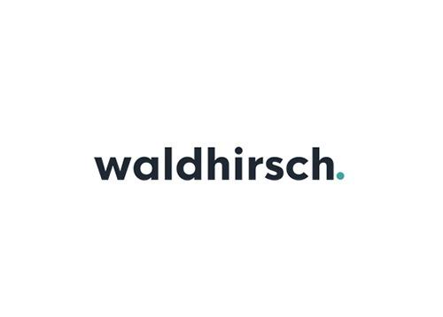 Logo Waldhirsch Marketing - Online Marketing Agentur aus Lörrach